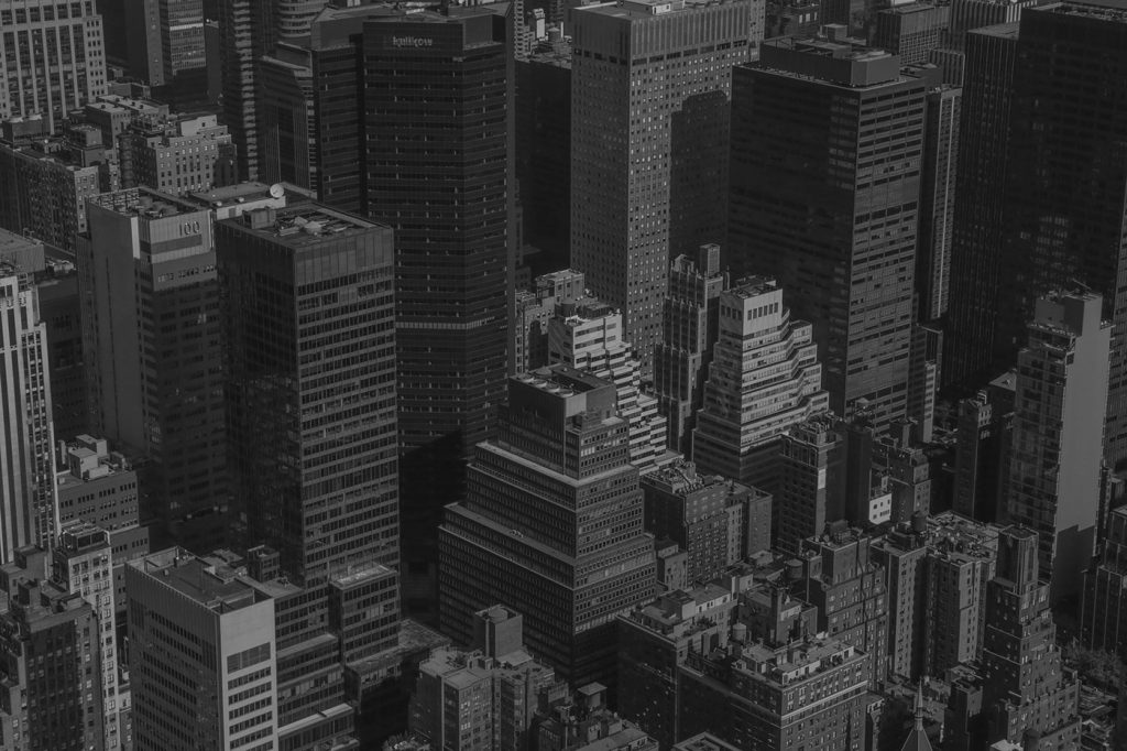 Miguel Rato – NYC